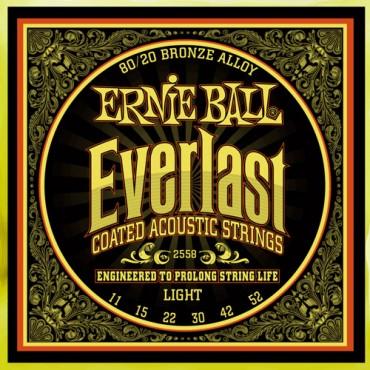 Ernie Ball Everlast 2558 light