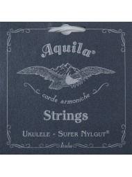 Aquila Super Nylgut 100U Soprano sol aigu