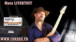 guitariste Manu Livertout